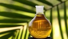Palm Crude Oil (skype: patusha19) Whatsapp&viber : +85510345785