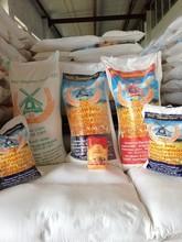 Flour/Wheat Flour/High quality Flour