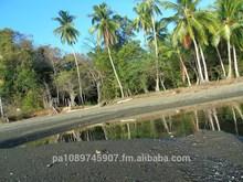 Land Island Cebaco