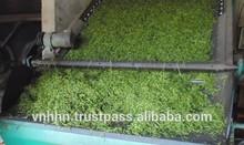 Vietnam OP green tea Hot New
