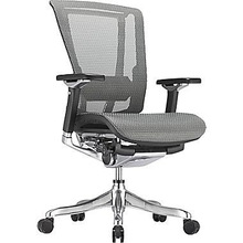 Raynor nefil Pro Smart Motion Mesh Managers Chair, Tech Gray