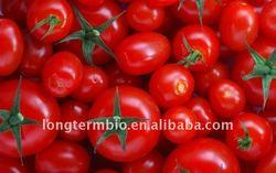 Lycopene(tomato extract)