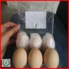 Hot PVC clean plastic 12 egg trays