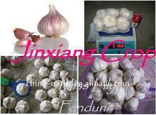 2011 Red Garlic