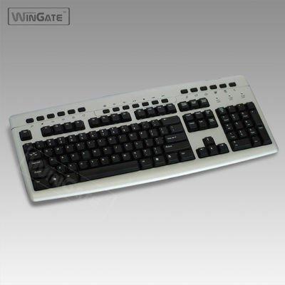 Multimedia Keyboard Standard PS/2 PS2 Gray