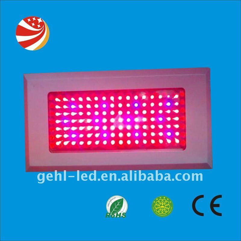 led grow lights toronto