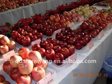 huaniu apple,chinese apple,fresh apple