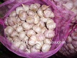 New Best Garlic/Alho/Garlic Braid
