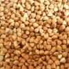 Roasted buckwheat kernels new crop 2011