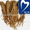 100% Natural Angelica Extract with Ligustilide&Ferulic acid
