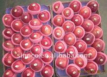 Sweet Fresh Huaniu Apple 2011 new crop
