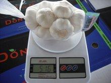 2011 Chinese new crop pure white garlic