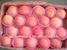 new crop yantai red fuji apple