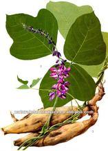 Pueraria Root P.E Isoflavones,Puerarin99%