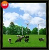 1KW Wind Energy Generator Easy Installtion Fast Delivery,3 Years Free Maintenance,High Efficiency