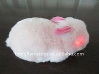 Radio control rabbit for kid