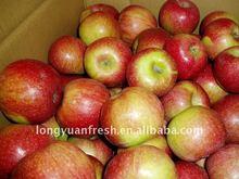 fresh Chinese small size Jiguan apple