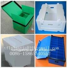 PP Corrugated Plastic Case