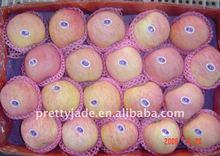 apple fruit providers