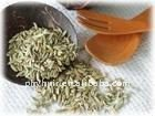 low price supply high quality yerba mate plant extract(P)