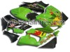ABS Bodywork/Motorcycle Fairing Kit for Kawasaki ZX6R 636 05-06
