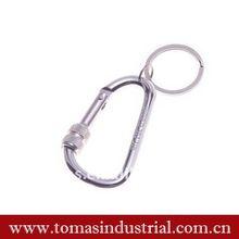 2012 screw lock carabiner with key ring