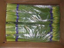 fresh garlic stem