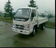 FORLAND 4x2 10T Light Cargo Truck