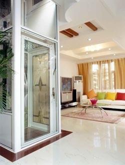 Swing Door Residential Home Elevator Buy Home Lift Home