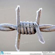 barbed wire t post