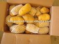 Supply frais, d'or. 100g-200g shandong pomme de terre