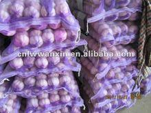 Garlic from Laiwu City