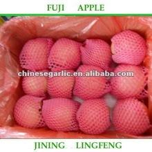 hot sell fresh fuji apple fruit