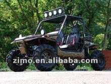 1100cc Buggy 4X4