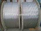 Aluminium Conductors Steel Reinforced (ACSR)