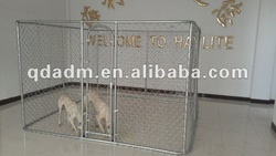 steel dog kennels