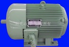 Large power brushless DC motor for elcetric car