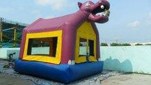 animal inflatable bouncy