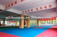 MMA/kung fu /martial art/judo/taekwond/wrestling mat