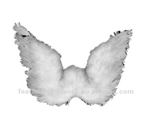 beautiful feather angel wing