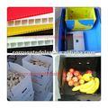 de plástico de frutas frescas e vegetais da caixa
