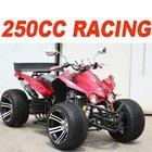 EEC 250CC QUAD ATV(MC-386)