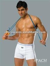 2012 boy sexy underwear PA1011
