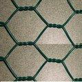 De plástico recubierto de alambre cestas ( pvc hexagnal alambre de púas )