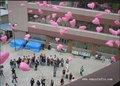Bio balões de coração