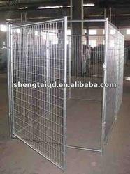 kennel dog