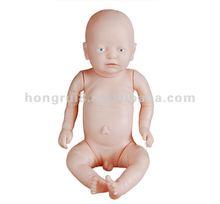 2012 Fashion Newborn Baby Model (High Quality Baby Model )
