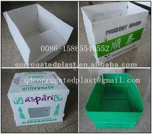 Polypropylene Packaging Coroplast Boxes