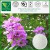 Natural Banaba Extract Powder