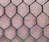 Hexagonal Wire Mesh(PVC & Galvanized)